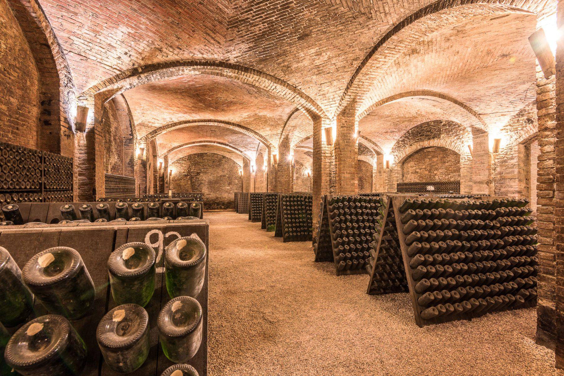 Contratto - Visit our cellar